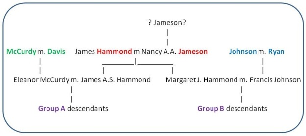 Hammond DNA Networks